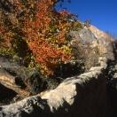 Краски тибетской осени