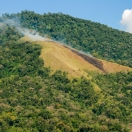 Slash-and-burn (jhum) cultivation