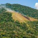 Джхум, подсечно-огневое земледелие