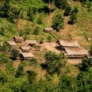 Дома из бамбука и пальмовых листьев