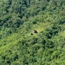 A forest house on the slope