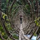 Новенький мост из лиан и бамбука