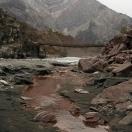 Гора Тюльпан