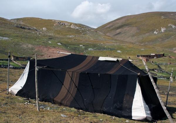Традиционная палатка кочевников Чангтанга