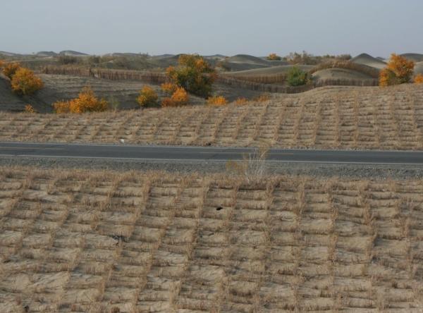 Сетки для удержания песка