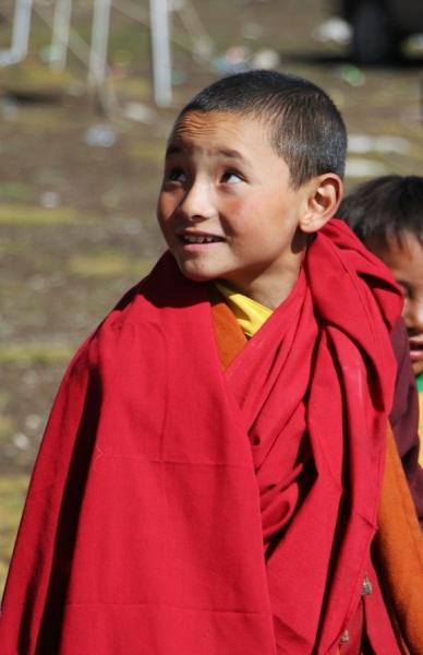 Из 70 монахов половина – совсем юные послушники, дети кочевий.