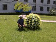 Самый большой кактус в Ланжоу
